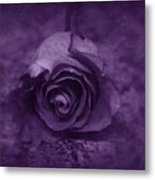Rose - Purple Metal Print