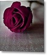 Rose #003 Metal Print