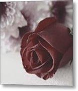 Rose #006 Metal Print