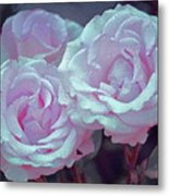 Rose 118 Metal Print by Pamela Cooper