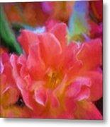 Rose 337 Metal Print