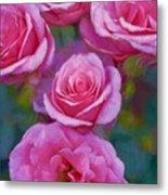 Rose 344 Metal Print