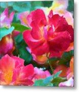 Rose 354 Metal Print