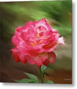 Rose Alone Metal Print