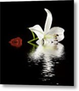 Rose And Lilly In Water Metal Print