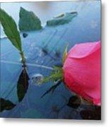 Rose And Water. Metal Print
