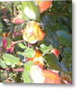 Rose Art Metal Print