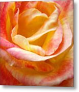 Rose Art Pink Yellow Summer Rose Floral Baslee Troutman Metal Print