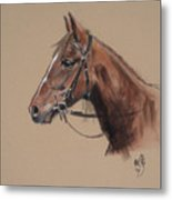 Rose At The Morgan Horse Ranch Prns Metal Print