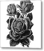 Rose Black Metal Print
