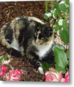 Rose Bower For A Cat Metal Print