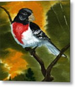 Rose Breasted Grossbeak Metal Print