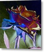 Rose By Design Metal Print