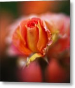 Rose Centerpiece Metal Print