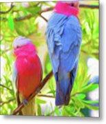 Rose cockatoos Metal Print