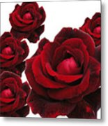 Rose Collage Metal Print