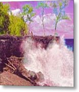 Rose Colored Splash At Mackenzie Metal Print