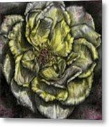 Rose Cream Metal Print