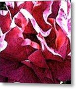 Rose Fresco Metal Print