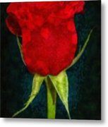 Rose - Id 16236-105012-4033 Metal Print