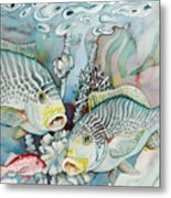 Rose Island IIi Metal Print