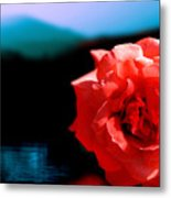 Rose Lake Metal Print