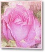 Enjoy A Rose Soft Pastel Metal Print