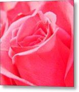 Rose Petals - 1 Metal Print