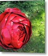 Rose Sculpture Metal Print