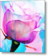 Rose Soft Pink Silked In Thick Paint Metal Print