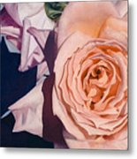Rose Splendour Metal Print