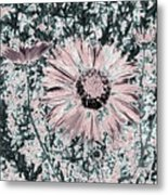 Rose Wine Daisies Metal Print