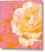 Rose With Pink Background Metal Print