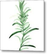 Rosemary Green Watercolor Foodart Metal Print