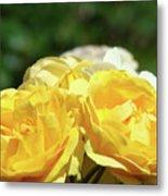 Roses Art Prints Canvas Sunlit Yellow Rose Flowers Baslee Troutman Metal Print