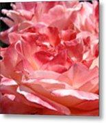 Roses Cinnamon Pink Rose Flowers 3 Rose Garden Art Baslee Troutman Metal Print