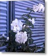Roses De Lignes Bleues Metal Print