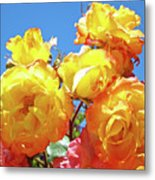 Roses Garden Summer Art Print Blue Sky Yellow Orange Metal Print