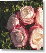 Roses In A Vase,on The Grass Metal Print