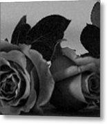 Roses In Bed Metal Print