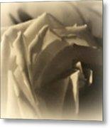 Roses In Moonlight 3 Metal Print