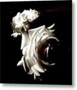 Roses In Moonlight 8 Metal Print