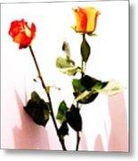 Roses In The Light Metal Print