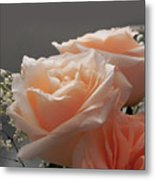 Roses Light Metal Print