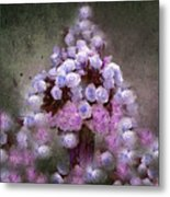Roses Lilac And Shabby Pink Metal Print