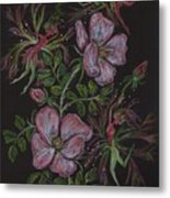 Roses Run Amok Metal Print by Dawn Fairies