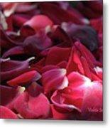 Rose Waves Metal Print