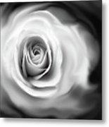 Rose's Whisper Black And White Metal Print