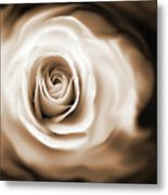 Rose's Whisper Sepia Metal Print