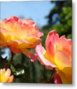 Roses Yellow Roses Pink Summer Roses 4 Blue Sky Landscape Baslee Troutman Metal Print